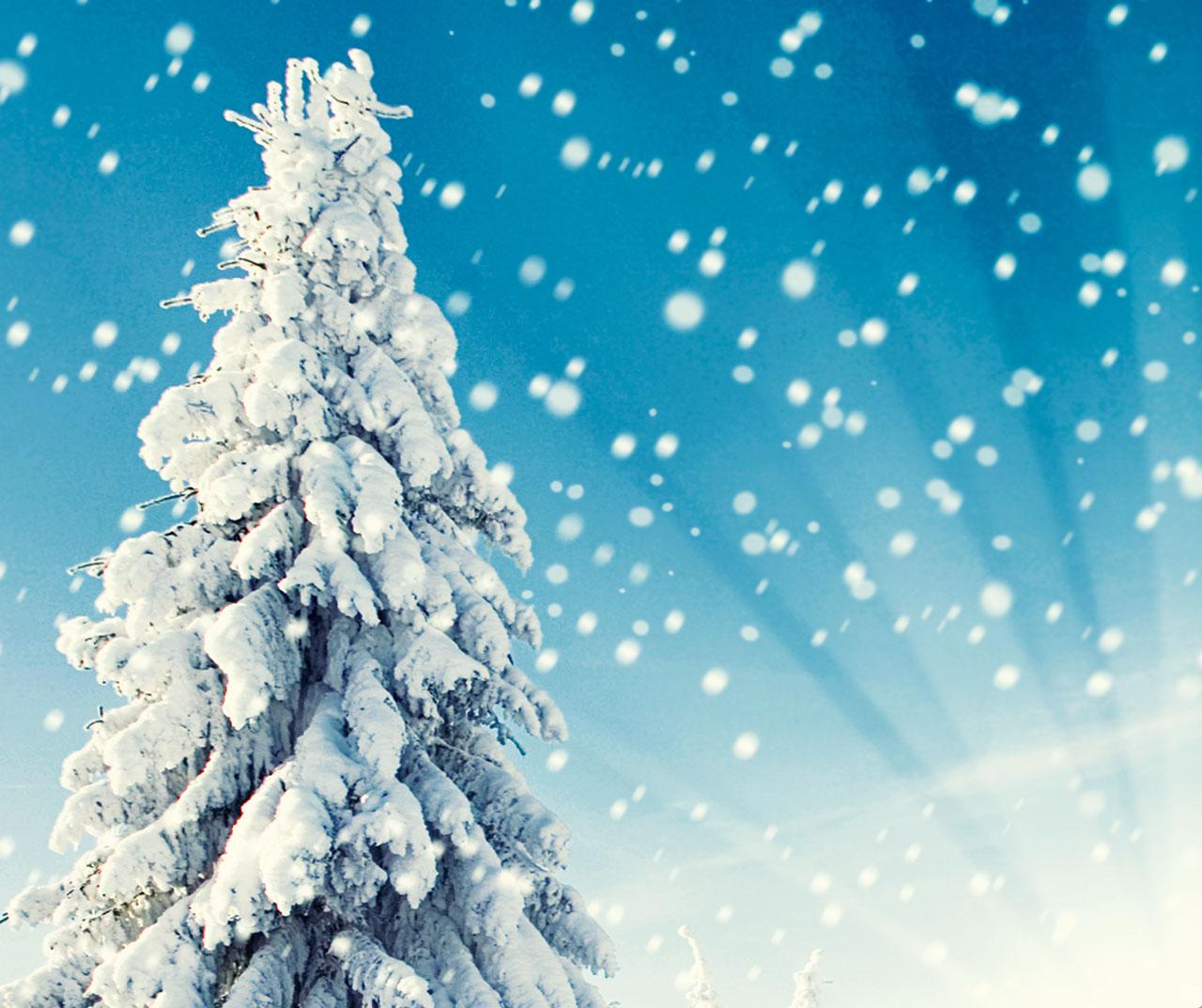Cover-Art-Spanish-winter-featuredimage