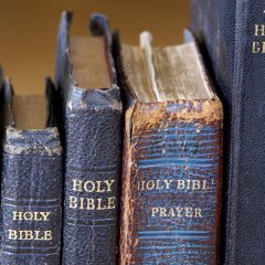 Q&A: Why do Bible texts differ?