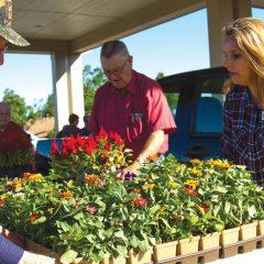 Flower gift keeps Baptist Village blooming