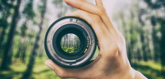 Perspective: The loss of focus
